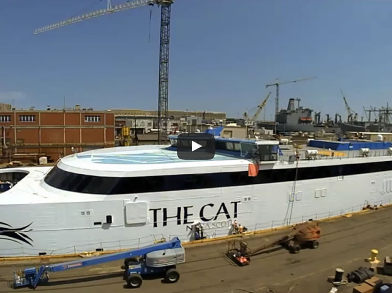 """THE CAT"" REFIT VIDEO"
